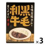 北野エース〈キャニオンスパイス〉旨味凝縮カレー(食べやすい中辛)180g 1セット(3個)