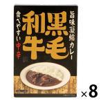 北野エース〈キャニオンスパイス〉旨味凝縮カレー(食べやすい中辛)180g  1セット(8個)