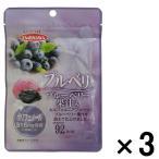 アウトレット藤沢商事 プルベリ ブルーベリー果汁入り 1セット(40g×3袋)