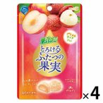 明治 果汁グミとろけるふたつの果実プラム&ライチ 4袋