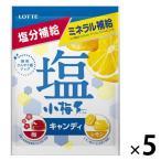 セール品 ロッテ 塩小梅(袋) 梅&レモン  5個