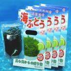 沖縄県産 海ぶどう 120g×4箱 メック・インターナショナル