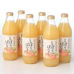 長野県 ふるさと納税 信州産りんごジュース しぼりっぱなし