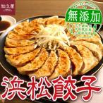 浜松市 ふるさと納税 ちくや[知久屋]浜松餃子たっぷりセット(無添加ぎょうざ100個)