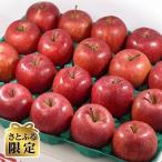 ふるさと納税 南部町 【2021年内発送】青森りんご サンふじ 中玉 5kg【さとふる限定】