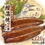 ふるさと納税 浜松市 【浜名湖産】 鰻蒲焼2本セット