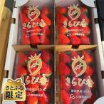 ふるさと納税 裾野市 21年12月以降発送いちごの里 BerryGoodのきらぴ香 約300g×4パック【さとふる限定】