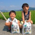 ふるさと納税 江北町 【令和3年産 新米】農薬、化学肥料を極限まで減らした、ひなた村のお米 さがびより玄米5kg×2袋