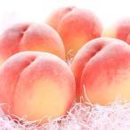 湯浅町 ふるさと納税 【産直・人気の特産品】和歌山の桃約2kg