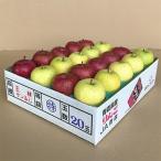 青森市 ふるさと納税 JA青森 青森県産りんご「サンふじ&王林詰合せ」計約5kg_A1-2