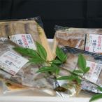 海南市 ふるさと納税 和歌山の近海でとれた新鮮魚の湯浅醤油みりん干し4品種9尾入りの詰め合わせ