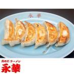 ふるさと納税 佐野市 【佐野餃子(中)野菜餃子(1個27g)24個4人前】×2袋
