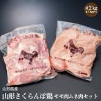 ふるさと納税 新庄市 【山形県産若鶏】山形さくらんぼ鶏 モモ肉ムネ肉セット