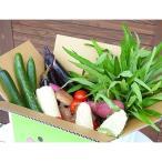 東金市 ふるさと納税 とっちー段ボールに入れてお届け!「採れたて新鮮!野菜BOX」