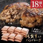 多久市 ふるさと納税 佐賀県産 がばいうまか 佐賀牛ハンバーグ (100g×18個)