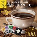 ふるさと納税 泉佐野市 厳選ドリップコーヒー5種100袋 010B192