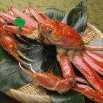 京丹後市 ふるさと納税 京丹後市産 茹で間人蟹(たいざがに) 厳選 大サイズ(900g〜1kg)