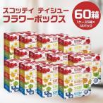 福知山市 ふるさと納税 【ボックスティッシュ】 スコッティティシューフラワーボックス 60箱(1ケース5箱×12パック)