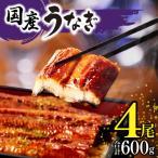 ふるさと納税 宮崎市 九州産 うなぎ蒲焼4尾(計600g)