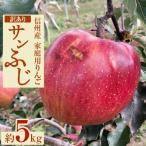 長野県 ふるさと納税 家庭用りんご サンふじ「訳あり」約5キロセット