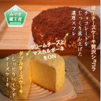 ふるさと納税 利府町 ふたつの味わいが楽しめる「ダブルチーズケーキ」と「蔵王チーズケーキ贅沢ショコラ」 さとふる限定セット
