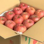 山形県 ふるさと納税 【先行受付】旨さたっぷり!ご家庭用りんご約10kg