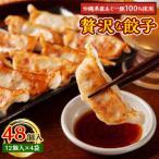ふるさと納税 嘉手納町 沖縄県産あぐー豚を100%使用した贅沢な餃子です 48個入(12個入×4袋)