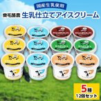 ふるさと納税 太田市 生乳仕立てアイスクリーム 12個セット