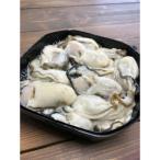 ふるさと納税 厚岸町 北海道厚岸産 牡蠣むいちゃいました!(生食用) 500g