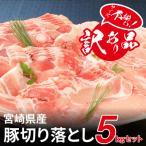 ふるさと納税 木城町 【訳あり】宮崎県産豚切落し5kg(500g×10パック)