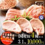 ふるさと納税 泉佐野市 氷温(R)熟成豚 国産豚4種セット3.1kg 010B635