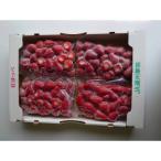 ふるさと納税 掛川市 掛川産『ミズノ農園の完熟冷凍紅ほっぺ』500g×4袋