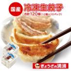 ふるさと納税 坂戸市 冷凍生餃子10パック(120個) ぎょうざの満洲