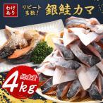ふるさと納税 勝浦市 【わけあり】大容量!銀鮭カマ 約4kg