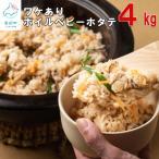 ふるさと納税 鹿部町 訳あり 不揃いな北海道産 ボイルホタテ 4kg(1kg×4袋) T6