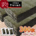 ふるさと納税 玉名市 《訳あり品》九州有明海産海苔 半切300枚(100枚×3)