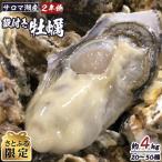 ふるさと納税 佐呂間町 【さとふる限定】サロマ湖産殻付き2年物牡蠣  約4kg(20〜50個) カキナイフ1本付き