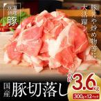 ふるさと納税 泉佐野市 【期間限定】氷温(R)熟成豚 国産豚切落し3.6kg(+1パック300g) 010B592