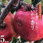 ふるさと納税 箕輪町 【傷等訳あり】甘い!希少!りんご あいかの香り 5キロセット