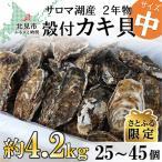 ふるさと納税 北見市 サロマ湖産殻付き2年牡蠣 中 約4.2kg(約25個〜45個)