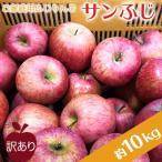 ふるさと納税 長井市 ご家庭用訳ありリンゴ(サンふじ)約10kg