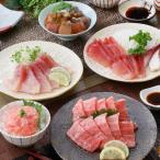 枕崎市 ふるさと納税 定期便(6ケ月)マグロ・カツオとご飯の