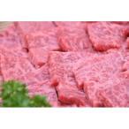 ふるさと納税 美濃加茂市 飛騨牛A5等級 焼肉用400g(モモ肉)