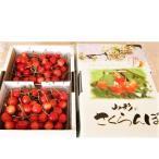 上山市 ふるさと納税 さくらんぼ(佐藤錦)1kg ご家庭用 0025-2102