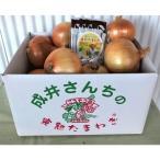 ふるさと納税 洲本市 成井さんちの完熟たまねぎ(5kg)+完熟たまねぎスープ:O-23