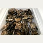 ふるさと納税 紋別市 生牡蠣 大〜特大サイズ 約2.8kg(20〜25個入)