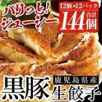 ふるさと納税 いちき串木野市 鹿児島黒豚生餃子 合計144個(12個×12P)