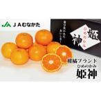 宗像市 ふるさと納税 急速冷凍!冷凍みかん JAむなかた柑橘ブランド「姫の神」2kg 甘くておいしいみかん_PA0269
