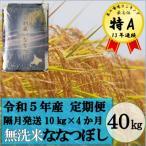 ふるさと納税 秩父別町 令和3年産 無洗米ななつぼし定期便40kg(1か月おき10kg×4か月)【新米】【TB-20】