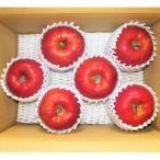 ふるさと納税 上山市 りんご(あいかの香り)3kg 贈答用 0014-2013